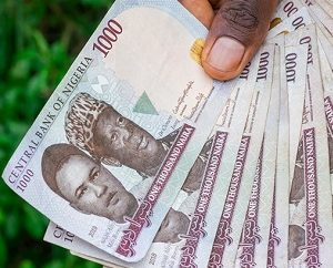 The Nigerian Naira Freefall: Where did it all go wrong?