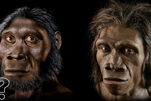 Established story about how humans came from Africa may be wrong.